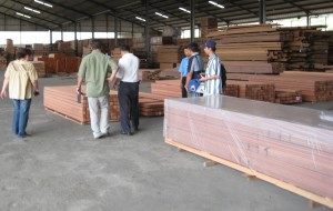 Trailer Decking - SE Asia Material Inspection by Kayu Owner and President, Steve Wilson